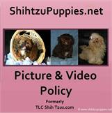 Picture and Video Policy